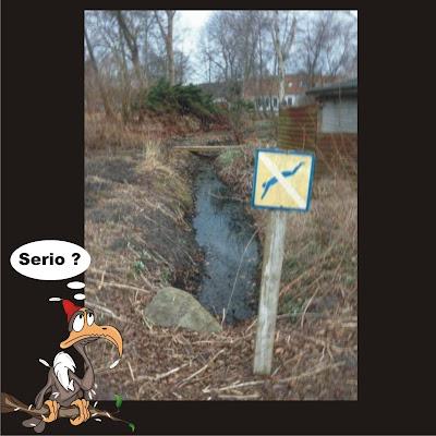 Proibido mergulhar hein!