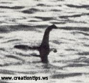 Nessie Isn&#39;t A Plesiosaur
