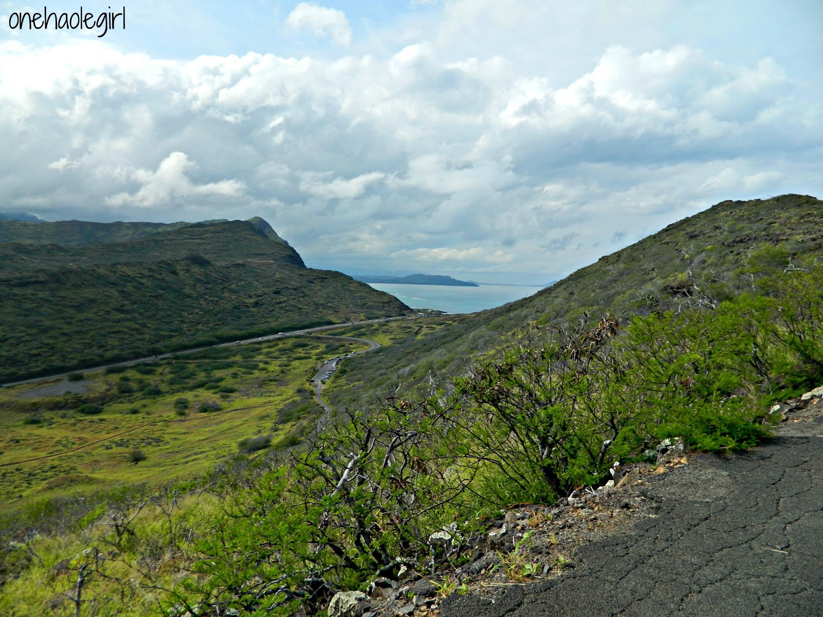 how to get to makapuu lighthouse trail by bus