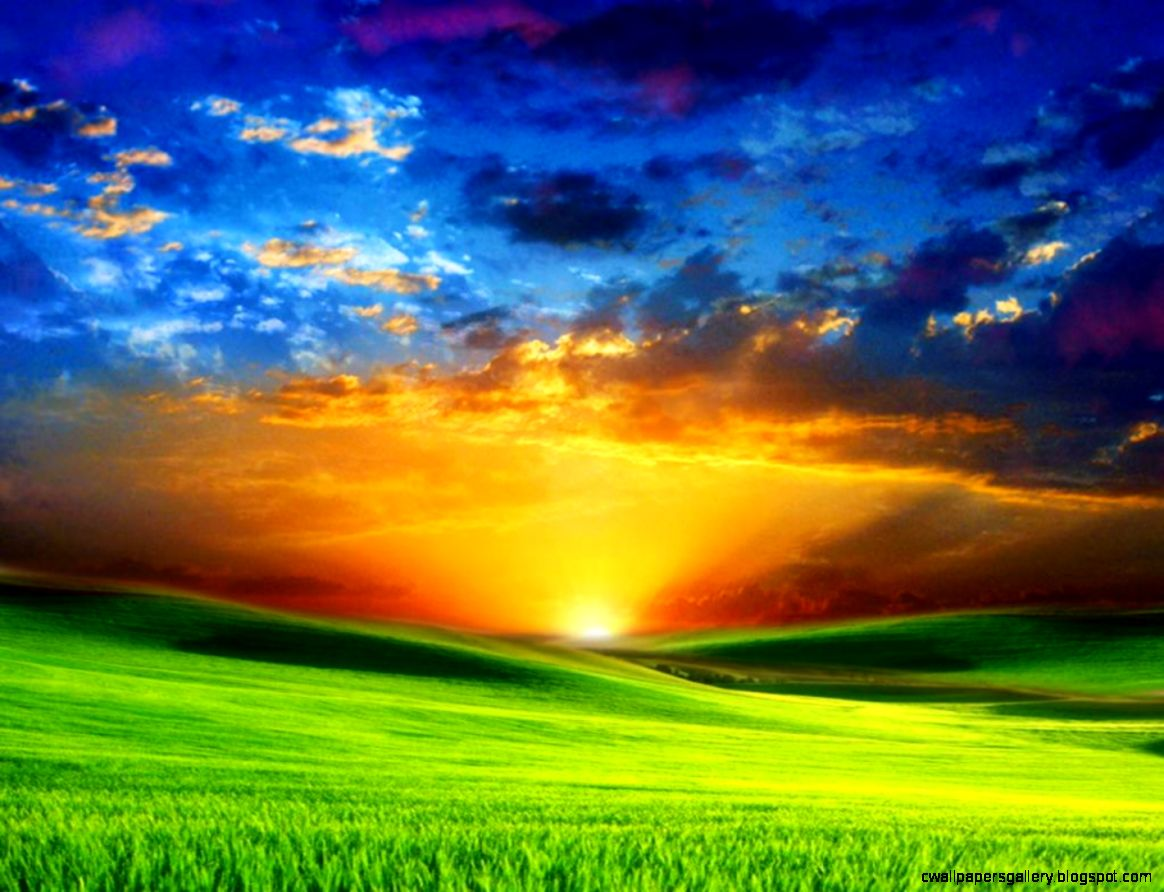 Download Beautiful Background Nature Bulkupload Part Wallpaper