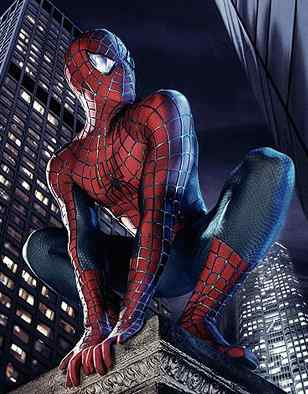 The Amazing Spiderman Video Game Cover