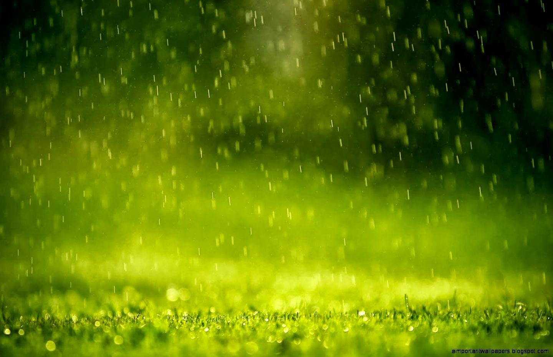 animated rain wallpapers 1366x768 - photo #2