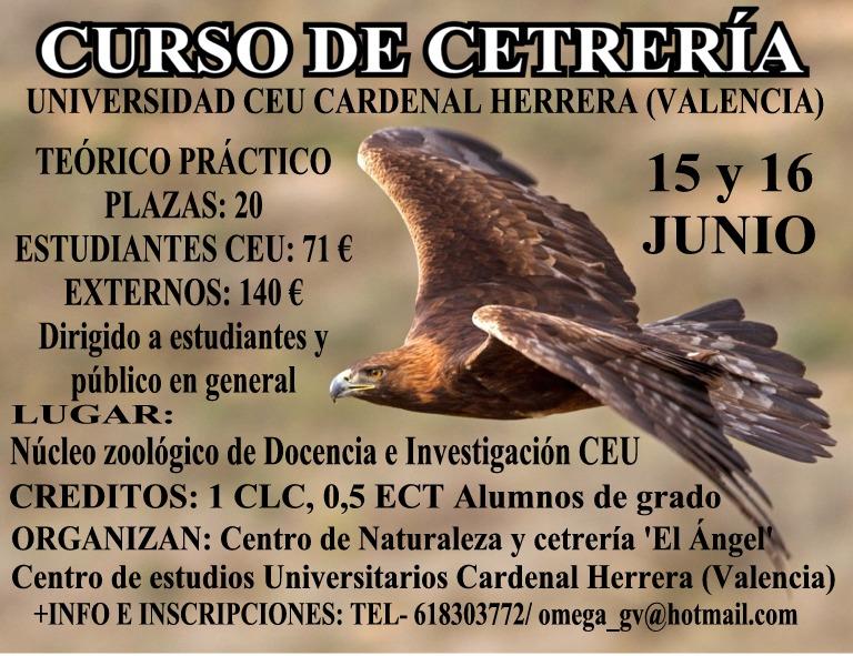 Curso de Cetrería en la Universidad CEU (Valencia) %C3%81guila+en+vuelo