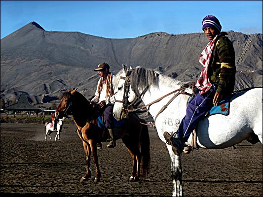 Jurnal Paket Wisata Bromo - Penunggang Kuda