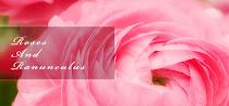 幾重にも重なる花びらがキレイな薔薇とラナンキュラスのフリー写真素材いろいろ