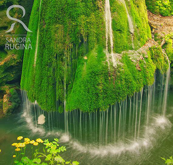 Cachoeira totalmente coberta por musgo na Romênia