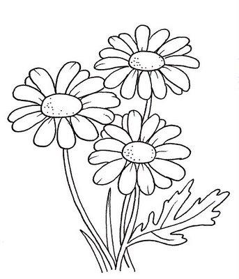 televisionado desenhos de flores para pintar