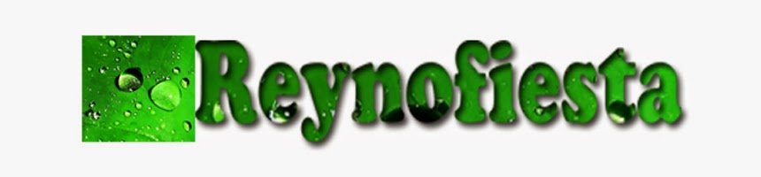 reynofiesta blogspot