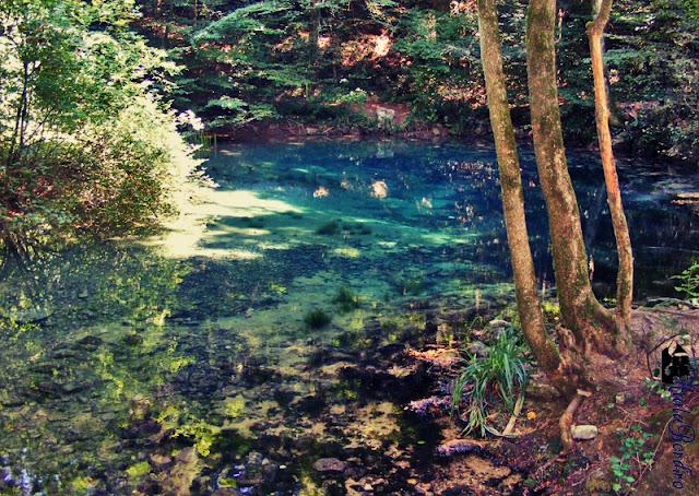 lacul ochiul beiului 2008