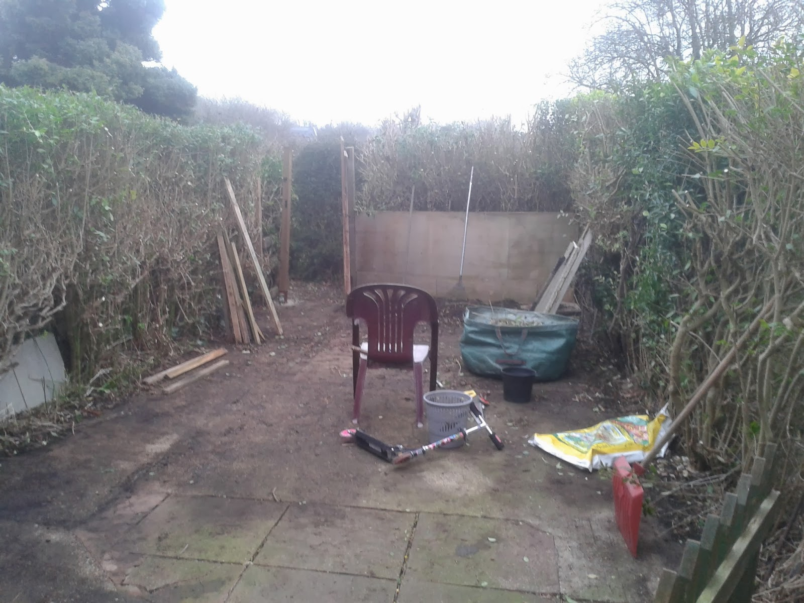 a tidy garden with an abandoned chair in the middle of it.