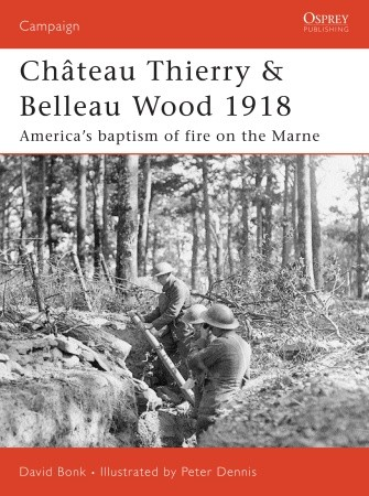 Wargames and railroads chateau thierry belleau wood for Bureau 02 chateau thierry
