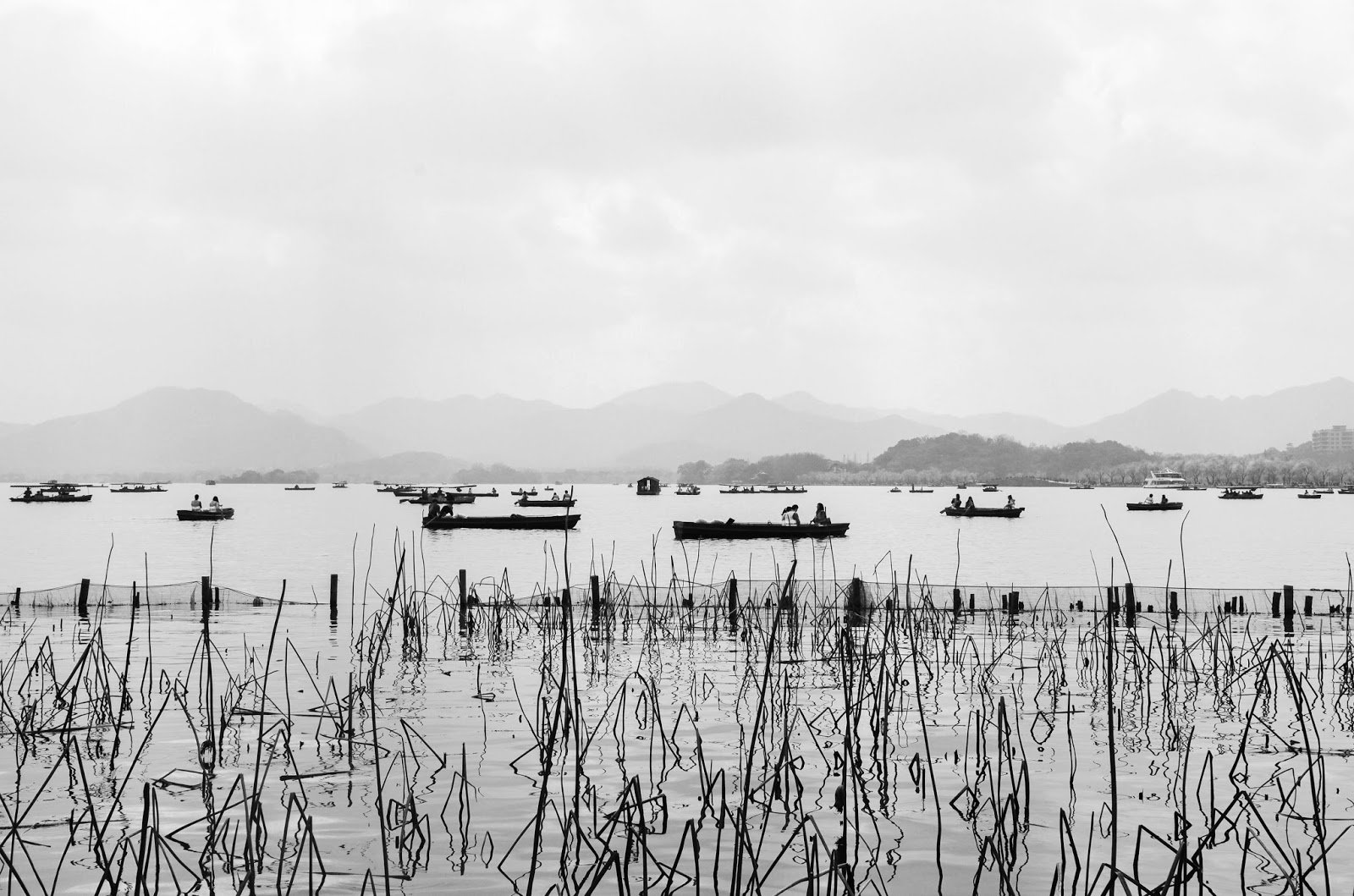 photography of the lake of Hangzhou