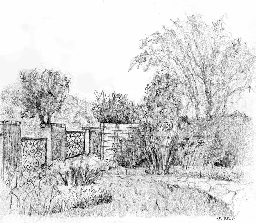 Mo dessine quelques coins du jardin for Bd du jardin botanique 50
