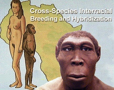 Race Mixing, Interracial Cross-Species Breeding, and the Hybrid Origins of Modern Man