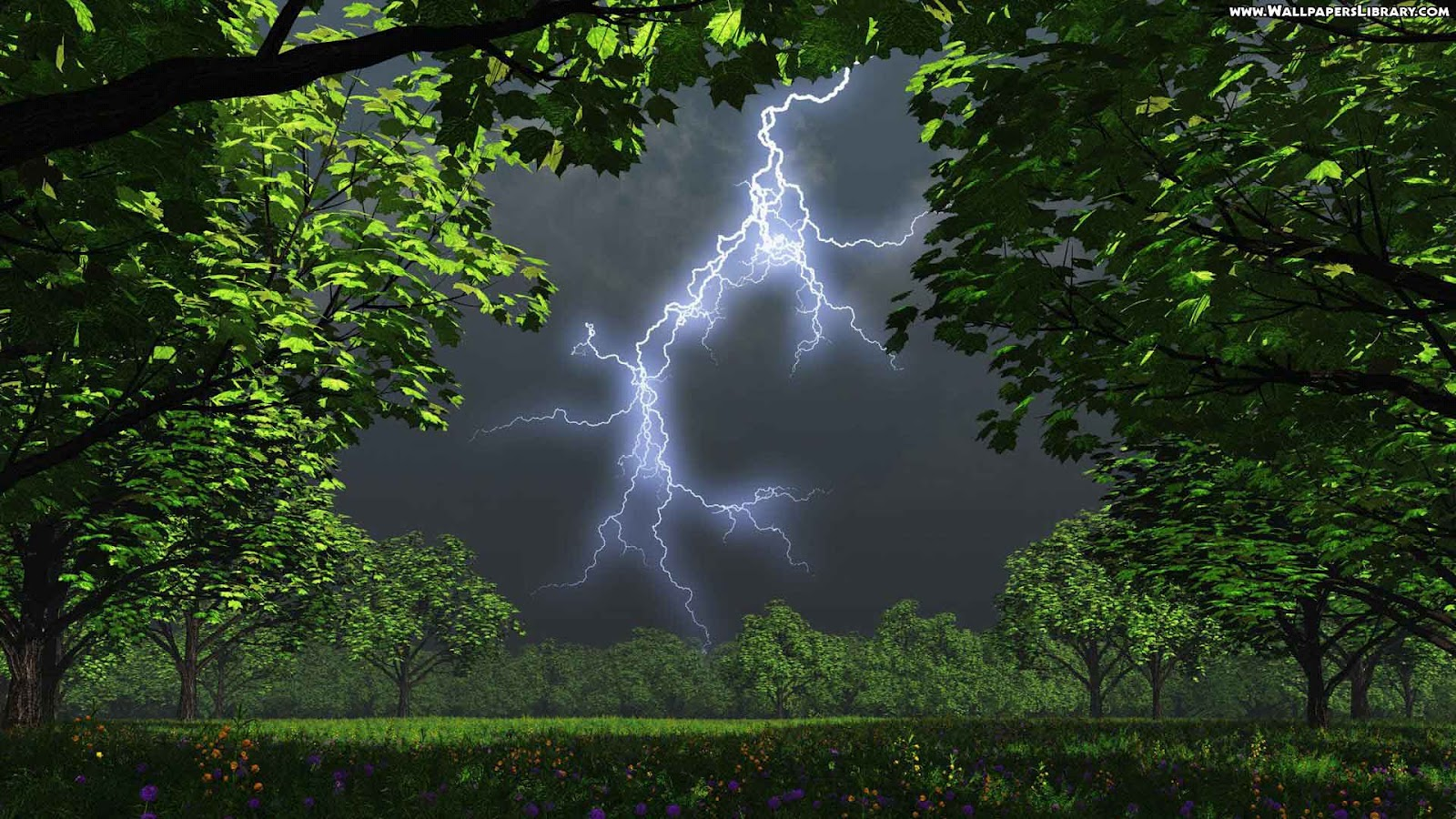 http://3.bp.blogspot.com/-jJNslGSIvA0/T40-lmwjBxI/AAAAAAAABiU/VInYbq9xWXQ/s1600/hd-desktop-wallpaper-nature-framing-lightning-images.jpg