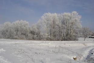 Thiên nhiên Ucraina