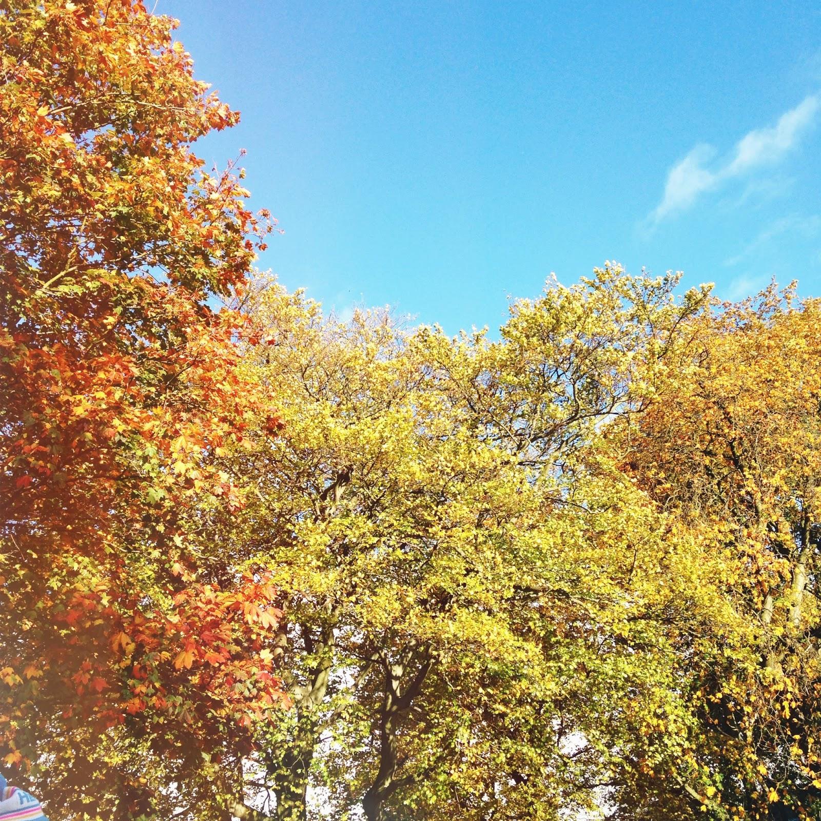 Autumn in england,