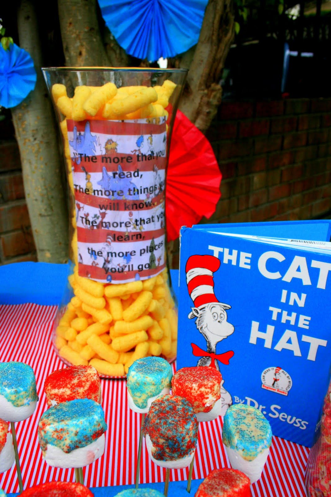 Dr Seuss Party