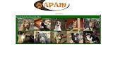 Apam fb group
