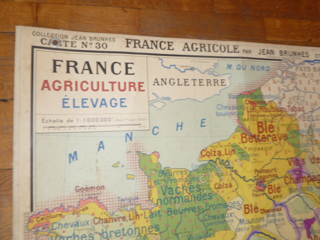 Vintage french posters botany animals anatomy old world maps from side 2 map of forest in france used in french school gumiabroncs Gallery
