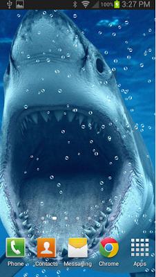 Shark Attack HD LWP