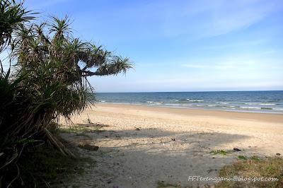 Pesisiran pantai