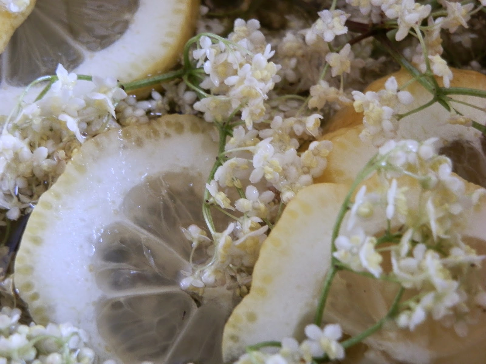 Kreativ Essplatze Kuche ~ Papierträume stempelliebe kreativ in der küche