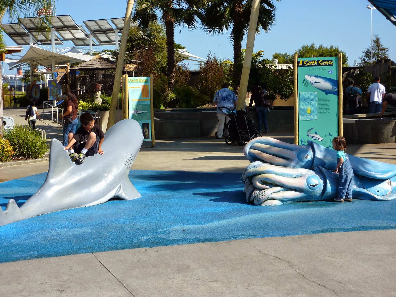 Montebello Mom Aquarium Of The Pacific Shark Lagoon Free