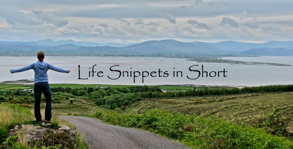 Life Snippets in Short