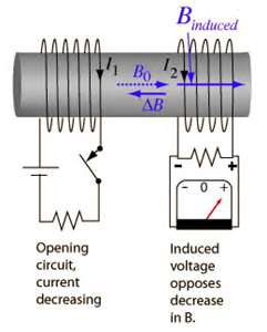 Star Delta 3 Phase Motor Starting further Brain Regions furthermore mutation In Dc Machine Or  mutation In Dc Generator Or Motor besides Dol Starter By Kantiakapil further Brushless Dc Motor Guide. on direct current motor diagram