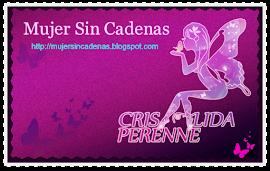 Visita nuestro  blog Mujer Sin Cadenas