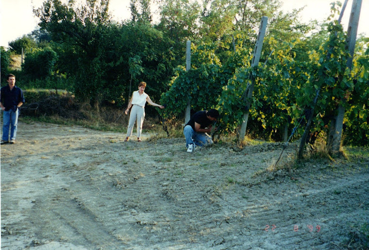 Tony stealing grapes in Tuscany!