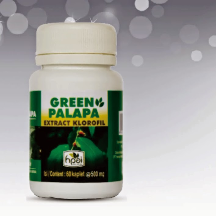 Video GREEN PALAPA ver2014
