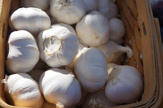 Garlic from Shamba Farms at the West End Farmers Market taken by Knerq
