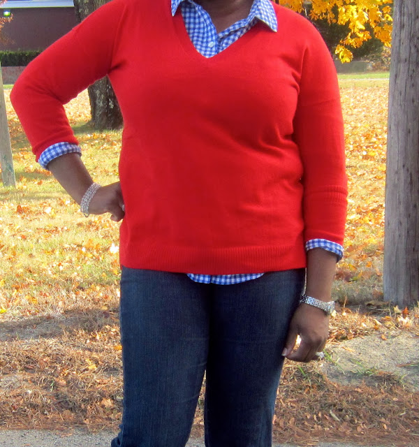 Blue Gingham, red sweater