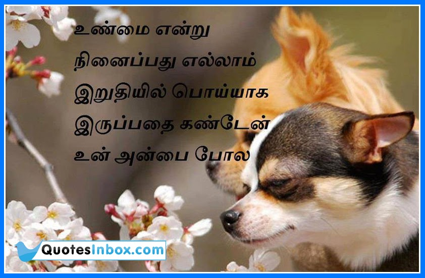 Here is a Latest Tamil Language Nice Messages for WhatsApp. Nice Good ...