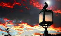 http://3.bp.blogspot.com/-jMXsT7f6Qr8/Uuluq_YSEeI/AAAAAAAAqQs/yGvNroFF3_c/s1600/prolhpseis-kai-deisidaimonies.jpg