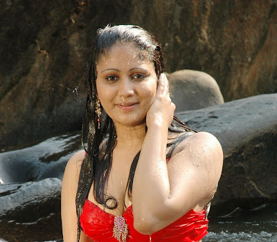 Tamil Actress Amrutha Valli hot wet Navel Show Photos