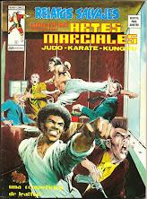 Artes Marciales 8
