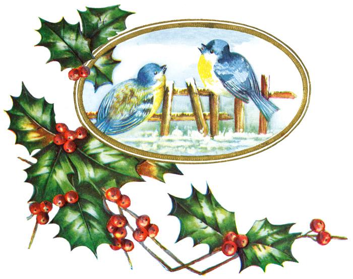 http://3.bp.blogspot.com/-jMxCTxScu2I/TvXtjOVBavI/AAAAAAAABIA/y55wjBwcE5k/s1600/christmas-birds-2.jpg