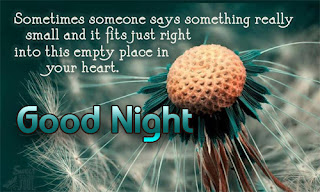 Good Night Messages And Sms For Husband