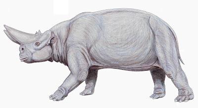 mamiferos prehistoricos gigantes Arsinoitherium