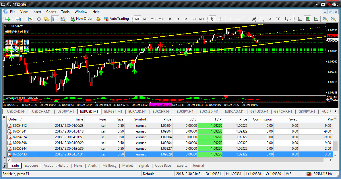 Forex high yield investment program