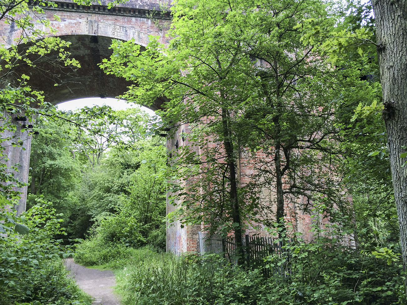 Viaduct in the woods behind Queen Victoria Hospital, near East Grinstead.  21 May 2014.