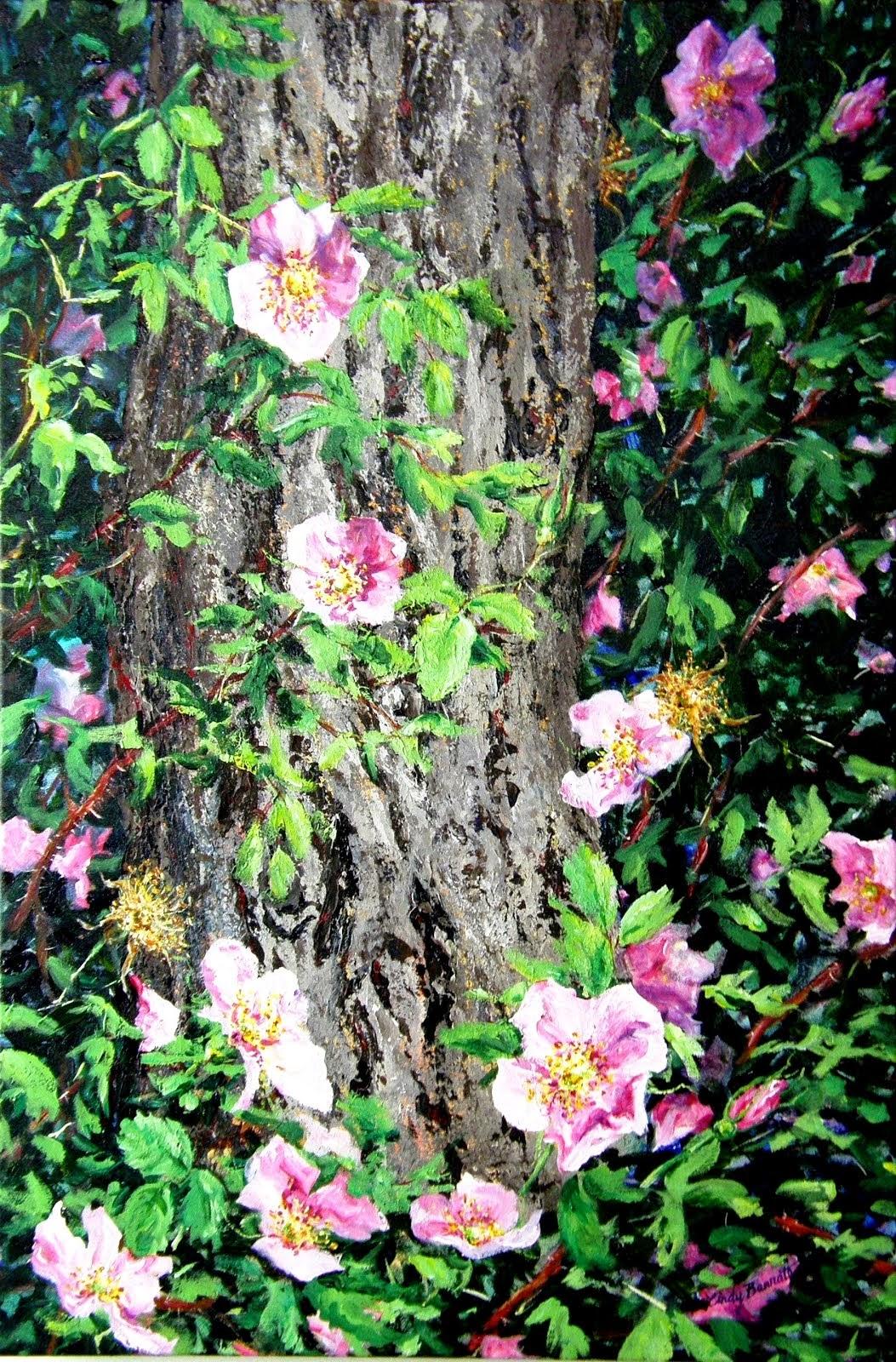 Summer Alberta Roses