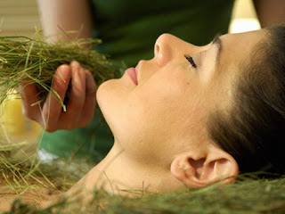 Herbal Beauty Tips for Summers