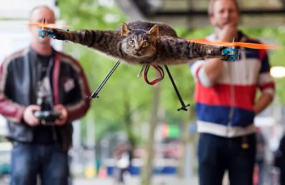 Como fazer um quadricóptero de gato