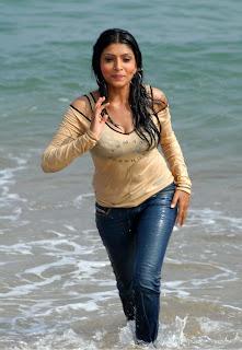 Commando movie actress Pooja chopra hot wet boobs