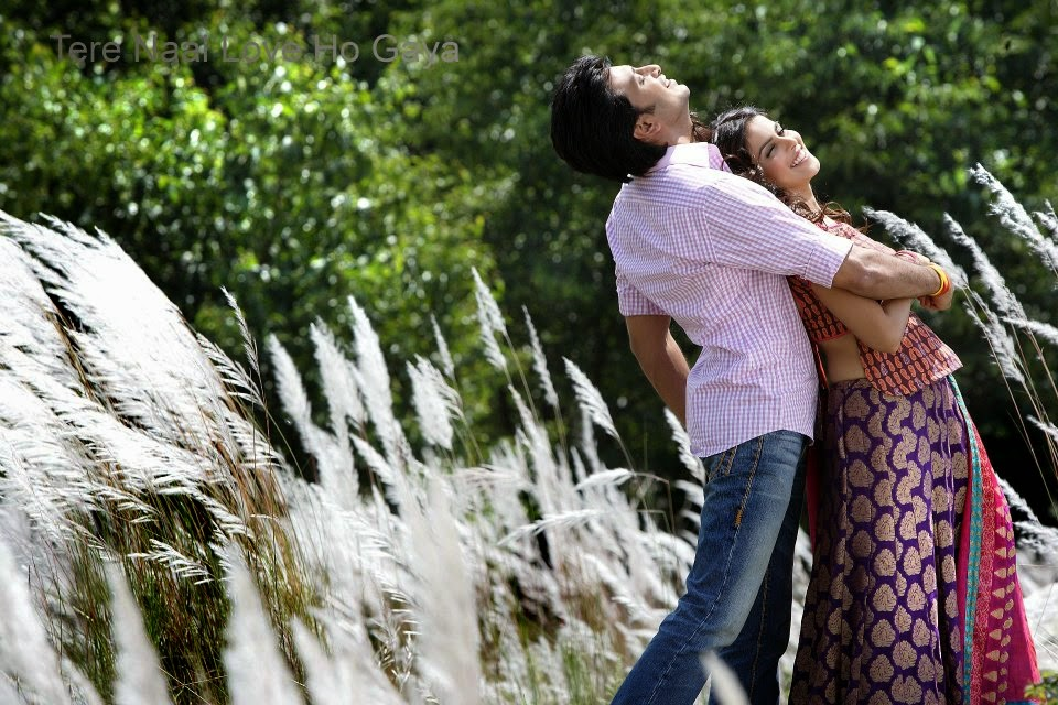 Tere Naal Love Ho Gaya Movie Review And HQ Wallpapers