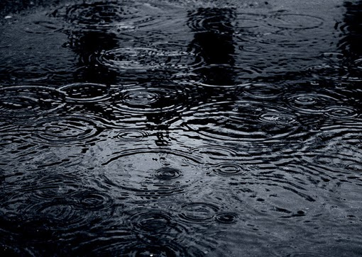 Moody Raindrops In Dark Blue Puddle